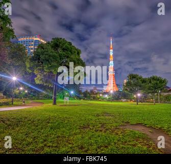 La vista della Torre di Tokyo di notte da un parco nella città di Tokyo, Giappone Foto Stock