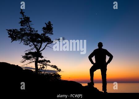 Silhouette di un albero e di un escursionista sulla costa del Parco Nazionale di Acadia, isola di Mount Desert, Foto Stock