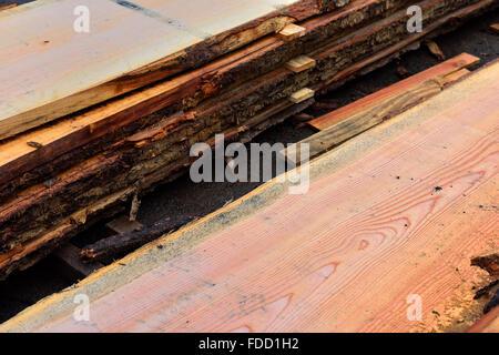 Listoni in legno etichettato e impilati per la stagionatura all'aperto Foto Stock