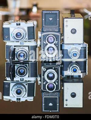 Una collezione di fotocamere vintage Foto Stock