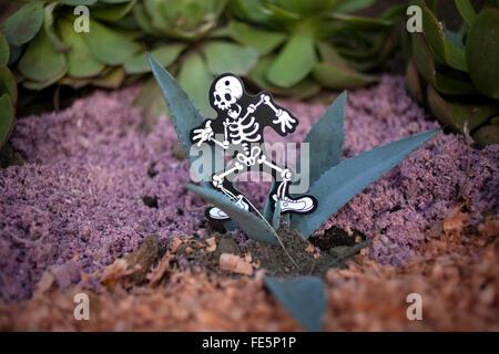Un'immagine di uno scheletro in esecuzione decora un cactus su una tomba nel cimitero di San Gregorio Atlapulco, Foto Stock