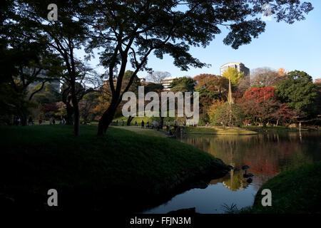 Koishikawa Korakuen Garden, Tokyo, Giappone. City Park nella stagione autunnale, fogliame di autunno su alberi. Foto Stock