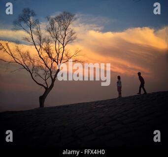 Basso angolo vista della ragazza e ragazzo giocando sulla collina di Tree contro il cielo nuvoloso durante il tramonto Foto Stock