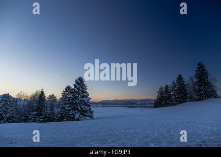 Geografia / viaggi, in Germania, in Baviera, Schwangau, Allgaeu, vista dal Vogelberg (picco) verso il lago Forggen Foto Stock