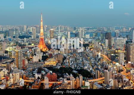 Tokyo, Giappone - 14 gennaio; 2016: vista notturna di Tokyo con la mitica Torre di Tokyo in background. Foto Stock