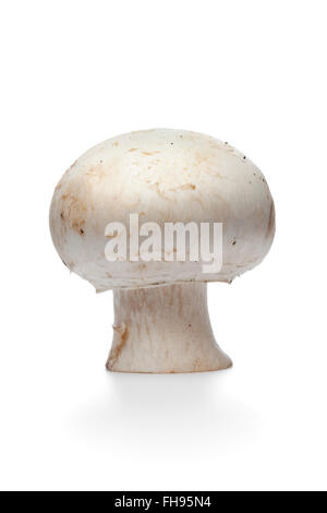 Tutta la singola crudo fresco pulsante, funghi champignon, isolato su sfondo bianco Foto Stock
