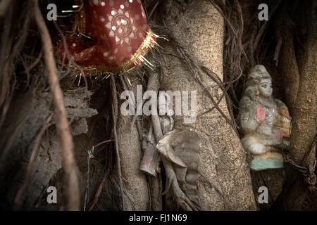 Statue di divinità Indù Lakshmi e Shiva appeso ad un albero a Delhi per il culto e rituali , India Foto Stock
