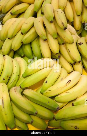 Banana Foto Stock