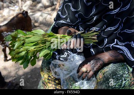 Gibuti, Arta, le donne a vendere Khat foglie, che è un farmaco da masticare, donna con Mehndi pittura a mano / DSCHIBUTI, Foto Stock