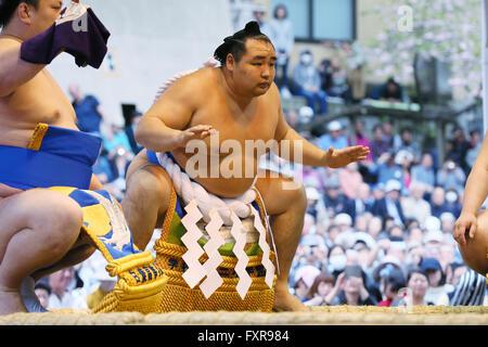 Tokyo Giappone. Xviii Apr, 2016. Kakuryu, Sumo : annuale torneo di sumo dedicata al Santuario Yasukuni a Tokyo in Foto Stock