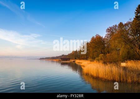 Lago Ammer in mattinata a Utting, Baviera, Germania Foto Stock