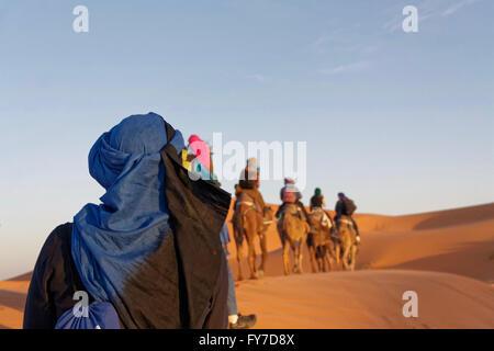 Camel trip in serata con diverse persone fotografate da dietro in Erg Chebbi deserto vicino a Merzouga in Marocco. Foto Stock