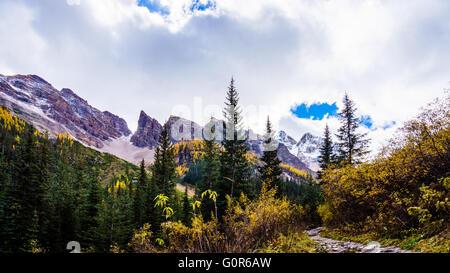 Escursioni attraverso la alta Alpine verso la pianura di sei ghiacciai nel Parco Nazionale di Banff nelle Montagne Foto Stock