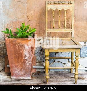 Arte sedia con impianto in giardino