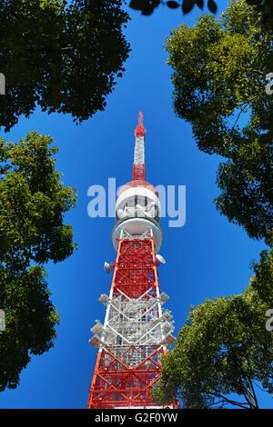 La Torre di Tokyo a Tokyo in Giappone Foto Stock