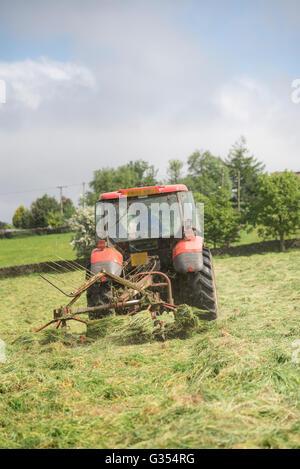 Un trattore rosso girando erba secca in estate un prato di fieno nella campagna inglese. Padre e figlio all'interno Foto Stock