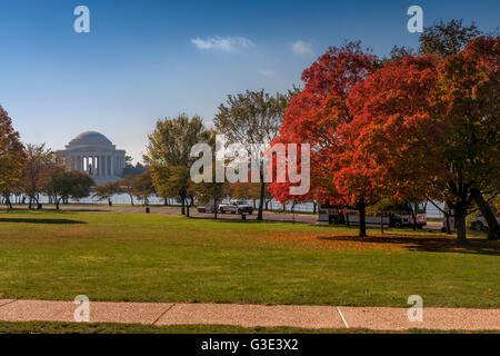 Jefferson Memorial durante l'Autunno / caduta con crimson foglie su un albero come si vede dal National Mall ,Washington Foto Stock