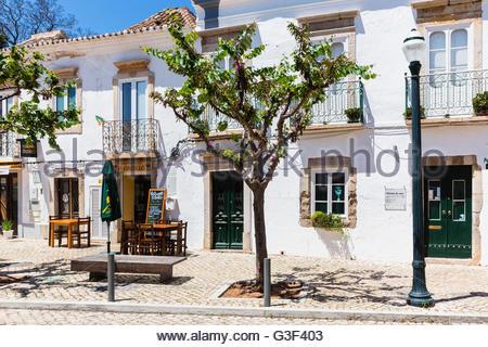 Albero nella parte anteriore di un bianco lavato facciata della casa nella città vecchia, Tavira, Algarve, PORTOGALLO Foto Stock