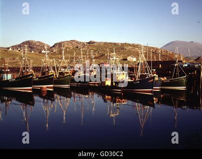 La Scozia, Sutherland. Kinlochbervie, con il peschereccio della flotta in porto in una luminosa domenica sera. Circa Foto Stock