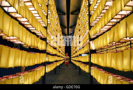 Tokyo, Giappone. 16 Luglio, 2016. 5 anno vecchio Luis Vargas del Giappone corre alla Yasukuni Jinja, Santuario scintoista Foto Stock