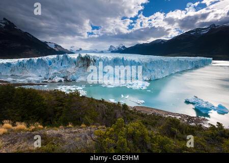 Perito Moreno, ghiacciaio,l'Argentina,Patagonia Foto Stock