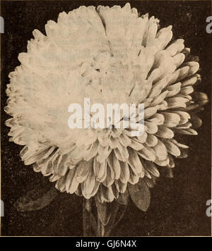 Dreer all'ingrosso Listino prezzi - Henry A. Dreer. Foto Stock