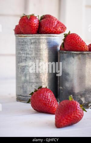 Le fragole in contenitori di metallo Foto Stock