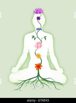Donna seduta in lotus posano con sette chakra simboli rappresentata come associati con i chakra fiori e colori