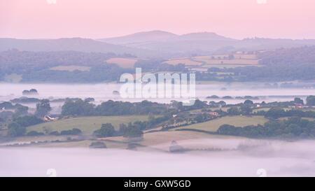 Nebbia copriva campagna di laminazione all'alba vicino a Moretonhampstead, Parco Nazionale di Dartmoor, Devon, Inghilterra. In estate (Luglio) 2015. Foto Stock