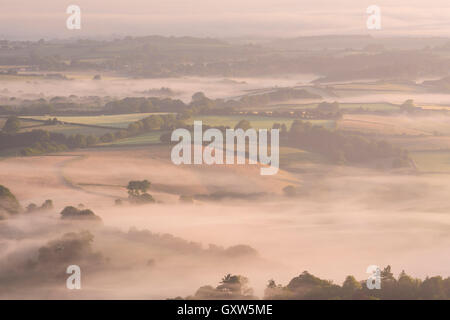 Nebbia copriva il rotolamento campagna vicino a Chagford, Parco Nazionale di Dartmoor, Devon, Inghilterra. In estate (Luglio) 2015. Foto Stock