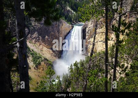 Le cascate Inferiori di Yellowstone River preso dal North Rim, il Grand Canyon di Yellowstone, il Parco Nazionale Foto Stock