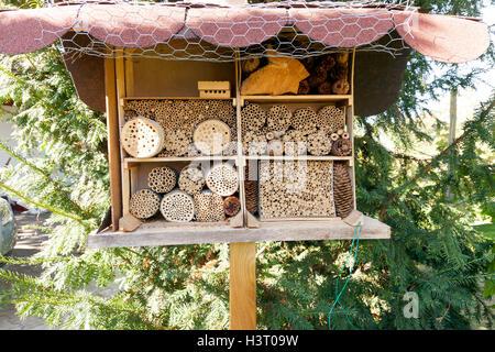 Habitat Per Incoraggiare Gli Insetti Fauna Nel Giardino