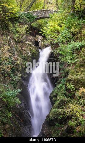 Aira Force cascata con colori autunnali, vicino a Ullswater, Lake District, Cumbria Regno Unito Foto Stock