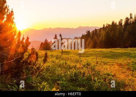 Il sole tramonta dietro le montagne e brilla di una luce calda sopra prati alpini che circondano da alberata. Foto Stock