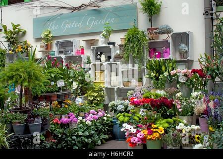 Pressione di stallo di fiori, Borough Market in Southwark vicino al London Bridge Foto Stock