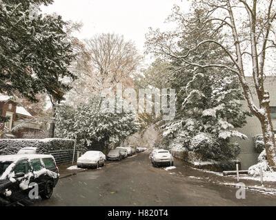 La prima neve di 2016 a othmarschen ad Amburgo, in Germania. Foto Stock