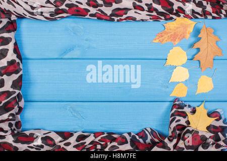 991415f01b8a ... Telaio di scialle colorato per donna e foglie autunnali su schede
