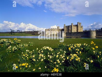 Il Castello di Leeds in primavera. Kent. In Inghilterra. Regno Unito Foto Stock