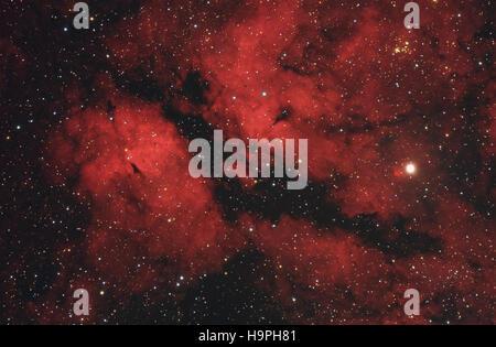 Butterfly nebula nella costellazione del Cigno, idrogeno ionizzato regione, IC1318 vicino a Sadr star - scattate Foto Stock