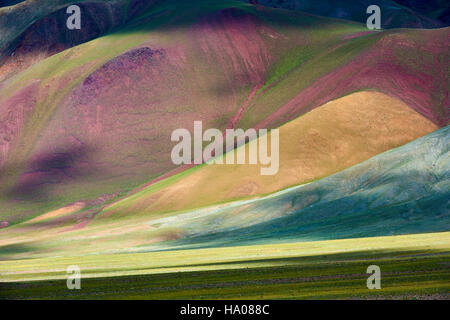 Mongolia, Bayan-Ulgii provincia, Mongolia occidentale, le montagne colorate del degli Altai Foto Stock
