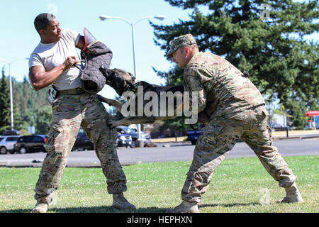 Il personale Sgt. Adam Serella (destra) e SPC. Bruce Brickleff (sinistra), sia militari cane da lavoro i gestori Foto Stock
