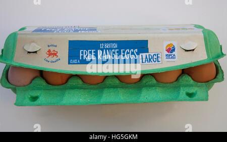 Dodici grandi British brown free range uova in verde nella casella di uovo RSPCA garantita Foto Stock