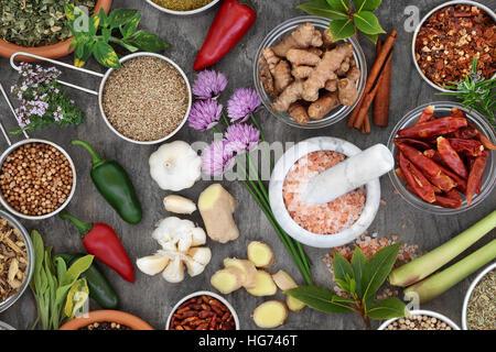 Fresche e secche di erbe e spezie condimento in ciotole, sessole, mortaio con pestello e sciolto, ricco di vitamine Foto Stock