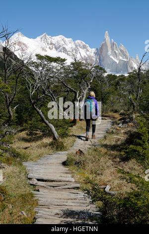 Escursionista sul sentiero a Laguna Torre con vista del Cerro Torre, El Chalten, Patagonia, Argentina, Sud America Foto Stock