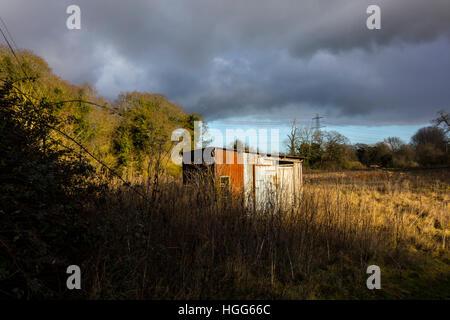 Lo stagno di ferro ondulato capanna sparso nel campo Foto Stock
