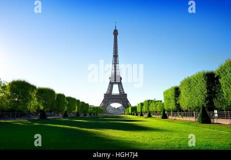 Vista Torre Eiffel da Champ de Mars a Parigi, Francia Foto Stock