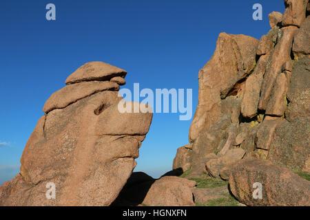 Faccia come giardino di roccia degli dèi Park Colorado Rocky Mountain