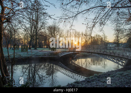 Morden hall park, london, Regno Unito. Il 21 gennaio, 2017. la nebbia che salgono dal fiume wandle come il sole Foto Stock