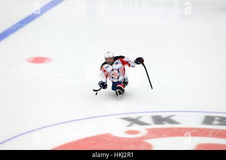 PODOLSK, Russia - 14 gennaio 2017: il lettore non identificato di Zvezda (bianco) del team di sledge hockey durante Foto Stock