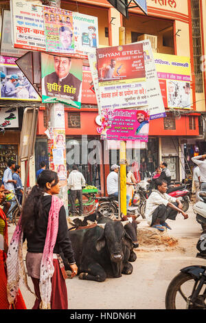 Attraversamento Godowlia ,downtown, Varanasi, Uttar Pradesh, India. Foto Stock